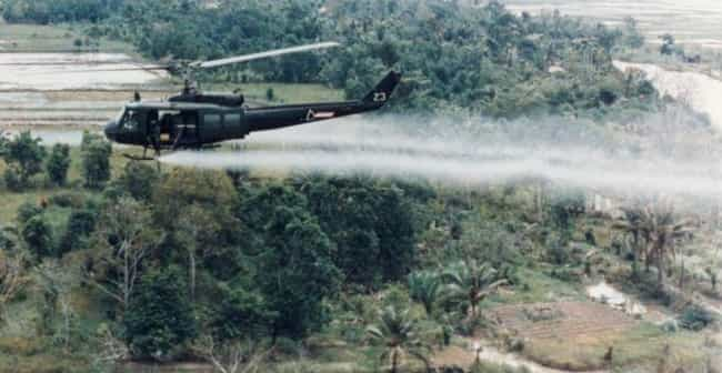 The Agent Orange Experim... is listed (or ranked) 1 on the list Historical Events You Should Never, Ever Google Image Search
