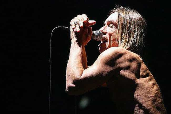 A Residency At Ungano's ... is listed (or ranked) 4 on the list Bloody and Vomit-Filled Behind-The-Scenes Stories Of Iggy Pop, The Godfather Of Punk