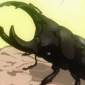 Pyunsuke is listed (or ranked) 16 on the list The Best Insect Anime Characters