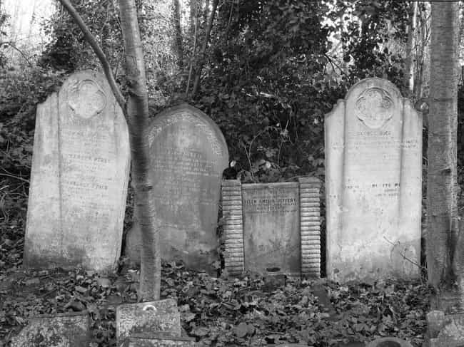 Graveyards And Property ... is listed (or ranked) 5 on the list The Right Way To Celebrate An Authentic Pagan Halloween