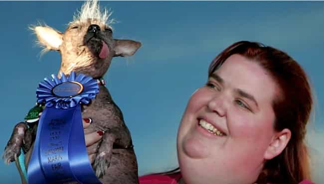 Archie, Winner 2006 is listed (or ranked) 4 on the list These Are Some Winners Of The World's Ugliest Dog Contest