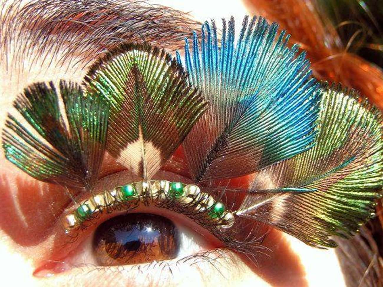 Pimp Those Peacock Lashes is listed (or ranked) 1 on the list People Are Gluing Objects To Their Eyelids For The Perfect Instagram Photo