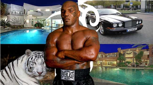 Tyson Spent Millions Of Dollar... is listed (or ranked) 4 on the list How Mike Tyson Made $400 Million Yet Still Declared Bankruptcy