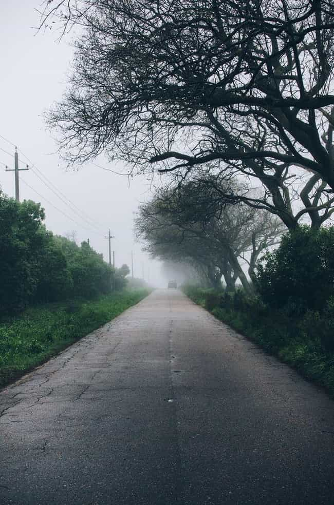 Visitors Claim Their Vehicles ... is listed (or ranked) 1 on the list People From All Over The World Visit This Haunted Hill Where Ghost Children Push Your Car