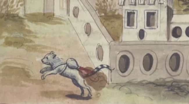 Franz Helm's Work On Warfa... is listed (or ranked) 2 on the list Why Are These 16th-Century Cats Wearing Jetpacks?