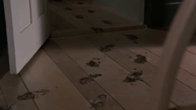 Wet Bootprints Appeared ... is listed (or ranked) 2 on the list There Is Convincing Evidence This House In Gary, Indiana, Was A Hotbed Of Demonic Activity