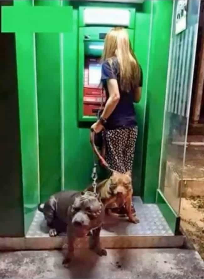 She'll Need A Tighter Grip... is listed (or ranked) 2 on the list People Are Using Their Dogs As Guards When At The ATM And It's As Funny As It Is Fierce