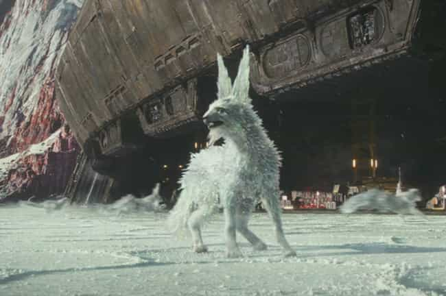 Ice Foxes is listed (or ranked) 3 on the list The Most Inconceivably Adorable Creatures To Come Out Of The Star Wars Universe