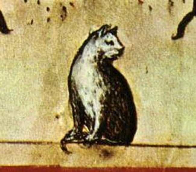 The Independent Nature Of Cats... is listed (or ranked) 2 on the list People In The Middle Ages Hated Cats So Much That They Ritualistically Tortured Them
