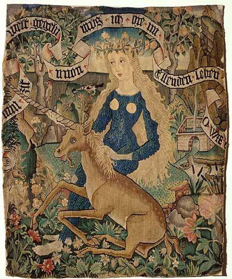 According To Legend, Unicorns Had Super Powers And Were Attracted To Virgins