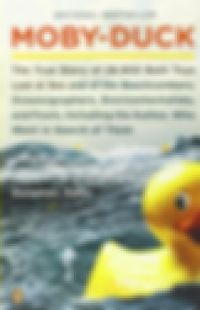 The Author Of The Book Had To ... is listed (or ranked) 4 on the list 28,000 Rubber Duck Toys Spilled Into The Ocean And The Pictures Are Insane