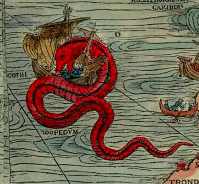 The 200-Foot Long Sea Se... is listed (or ranked) 3 on the list During the Renaissance Era, Sailors Thought Monsters Stalked the Seas