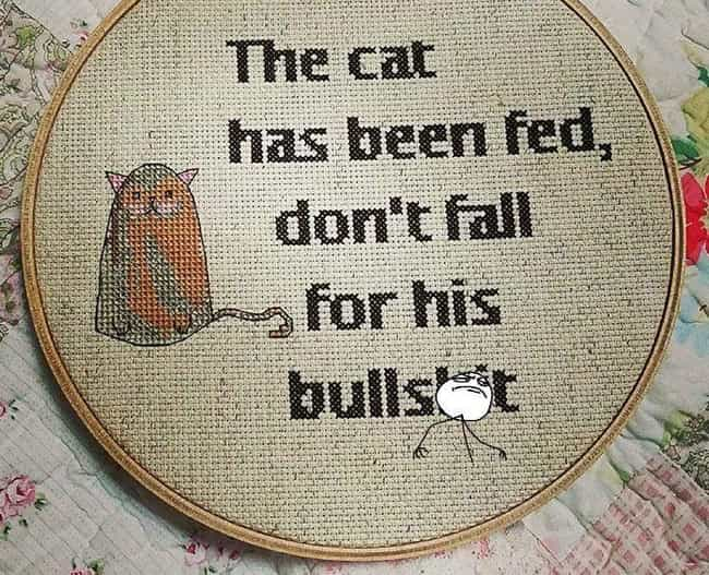Kitty Has Fooled Before. Kitty... is listed (or ranked) 1 on the list Hilariously Inappropriate Cross-Stitchers Who Just Don't Care