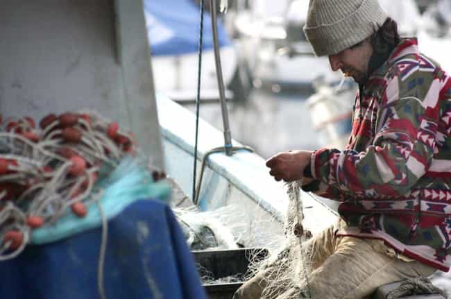 They Make Their Jobs Seem Real... is listed (or ranked) 3 on the list Deadliest Catch Is A Load Of Bull-Fish