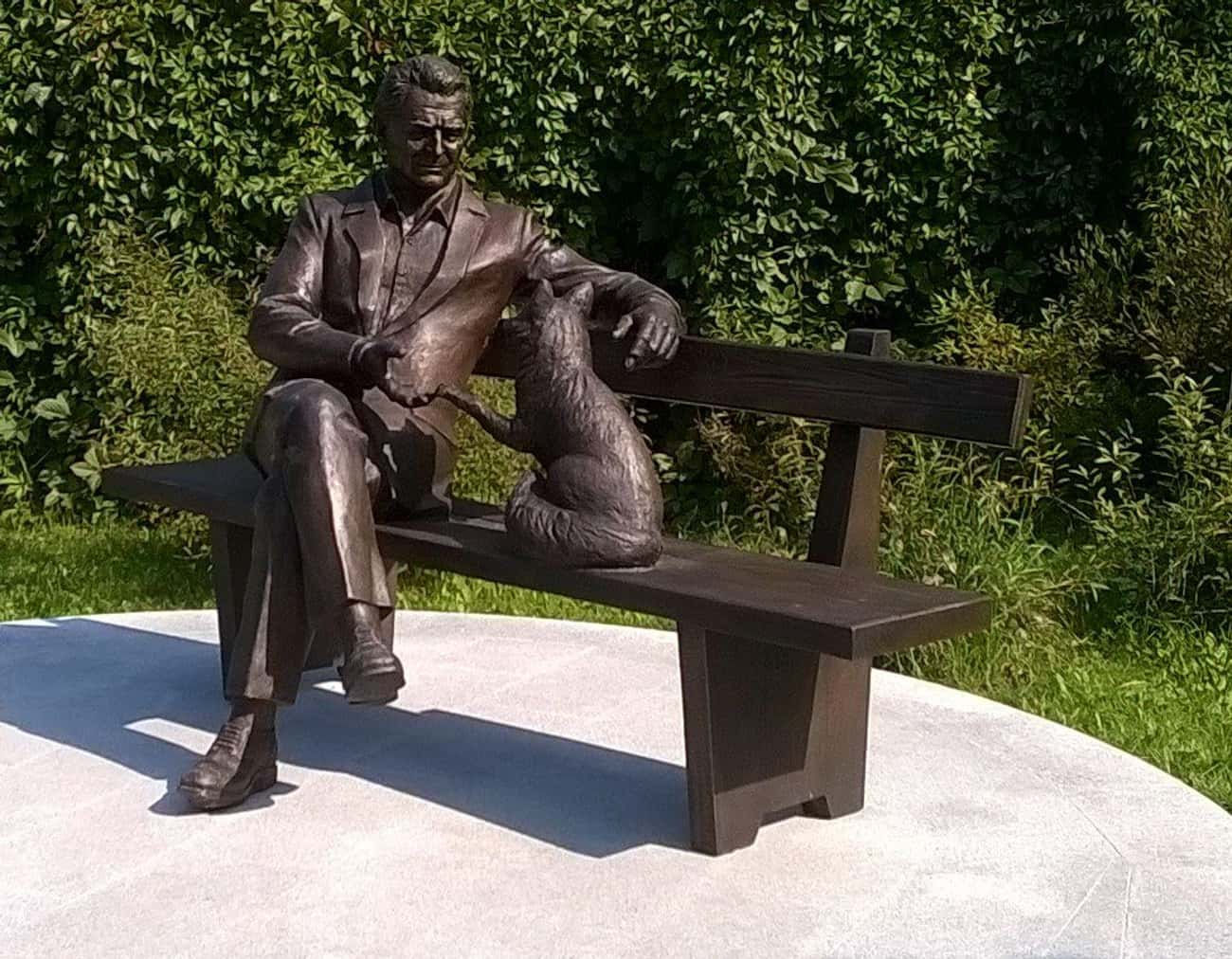 It All Started With A Desire T is listed (or ranked) 4 on the list Russians Are Trying To Turn Foxes Into Pets—But They Noticed A Weird Side Effect