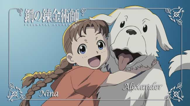 Nina Tucker's Relationship... is listed (or ranked) 1 on the list 15 Reasons Why FMA 2003 Is Better Than FMA Brotherhood