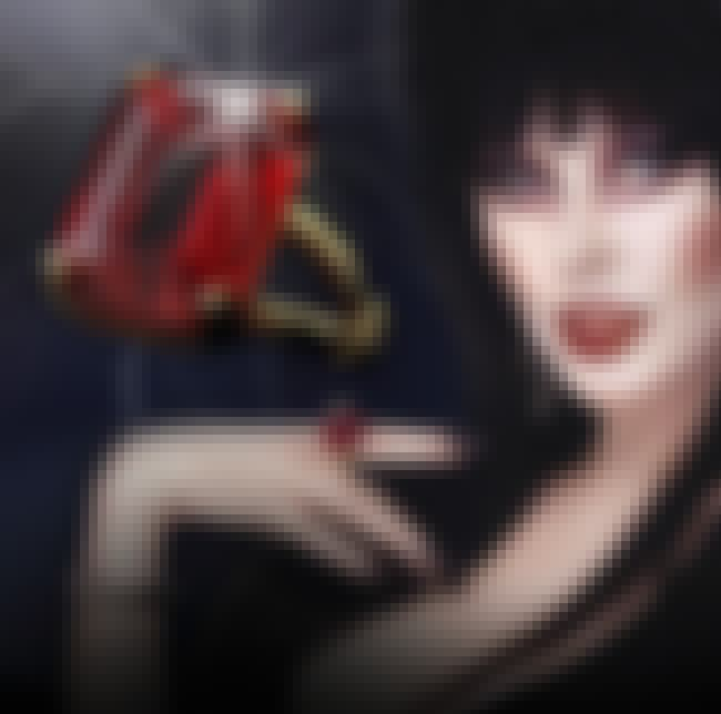 You Can Buy Her Elvira Line Of... is listed (or ranked) 3 on the list Everything You Never Knew About Elvira, Mistress Of The Dark And Where She Is Now