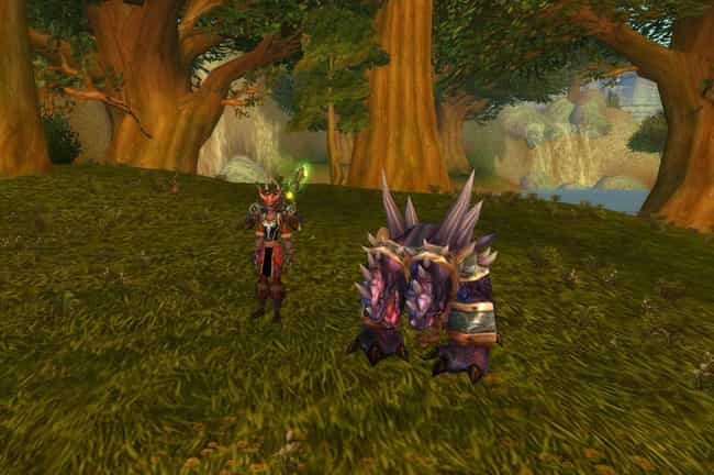 Pets Become Bombs In 'World Of Warcraft'