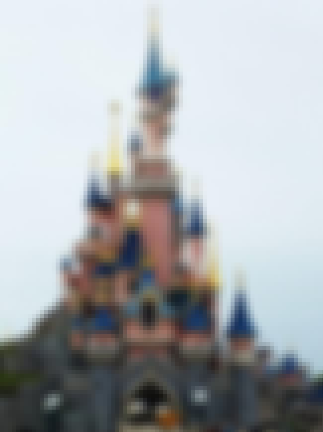 There Were Two Staff Suicides ... is listed (or ranked) 4 on the list 11 Horrible Disneyland Workplace Abuses Disney Tries To Cover Up