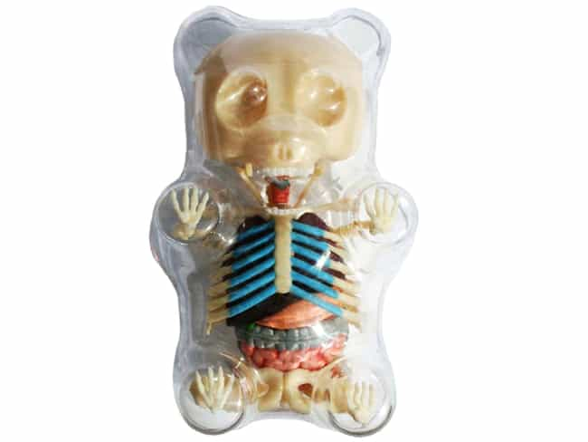 Gummy Bear Anatomical Mo... is listed (or ranked) 2 on the list Incredibly Bizarre Gifts That Are Certainly Not For Everybody