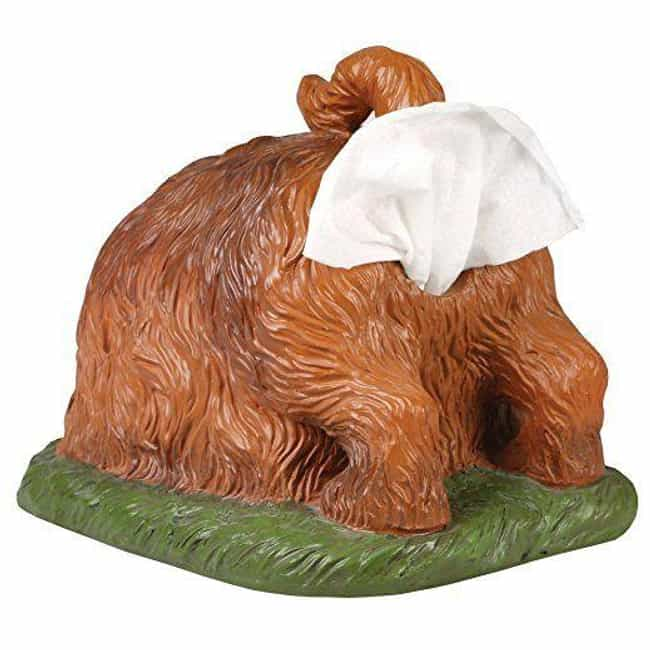 Digging Dog Butt Tissue ... is listed (or ranked) 4 on the list Incredibly Bizarre Gifts That Are Certainly Not For Everybody