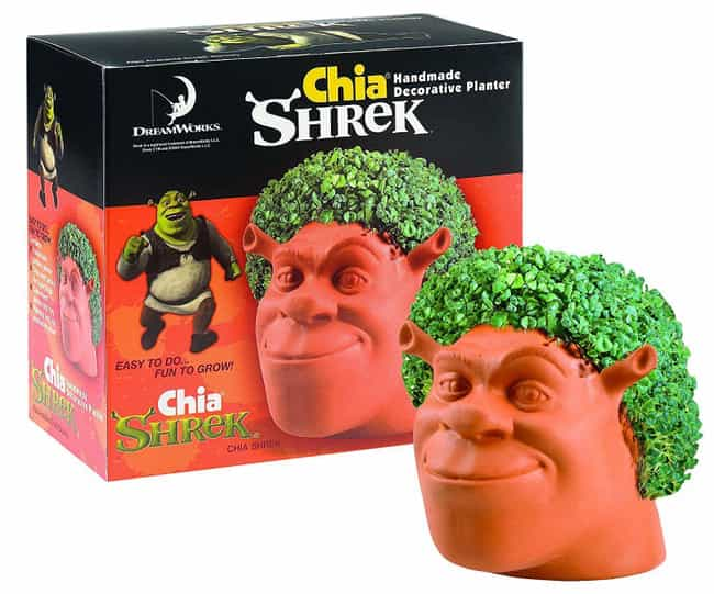 Chia Shrek is listed (or ranked) 2 on the list Chia Pets Still Exist And You Won't Believe How Many Crazy New Ones There Are