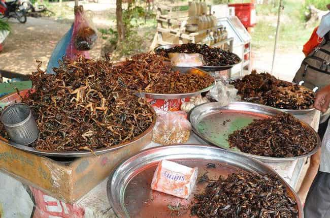 A Cafe In Cambodia Is Cr... is listed (or ranked) 3 on the list 11 Of The Most Delicious Ways To Eat Bugs Around The World