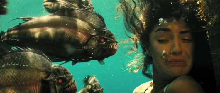 Having All Your Flesh Eaten By Piranhas