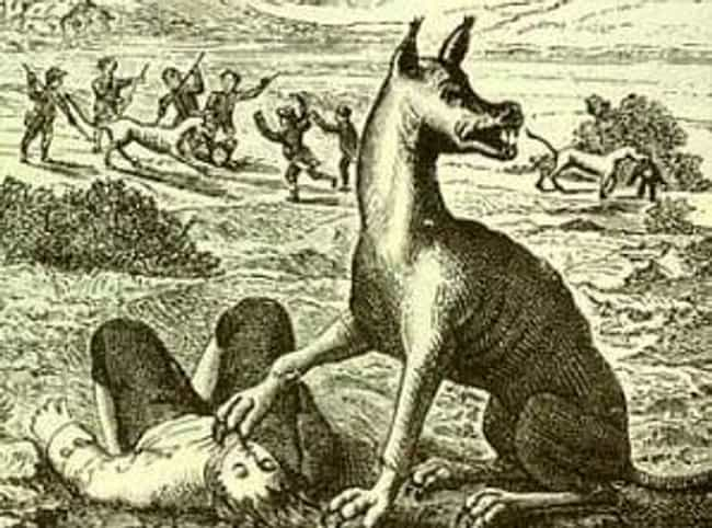 One Person Saw The Werew... is listed (or ranked) 4 on the list A Werewolf Has Terrorized The English Countryside For So Long Locals Gave The Beast A Nickname