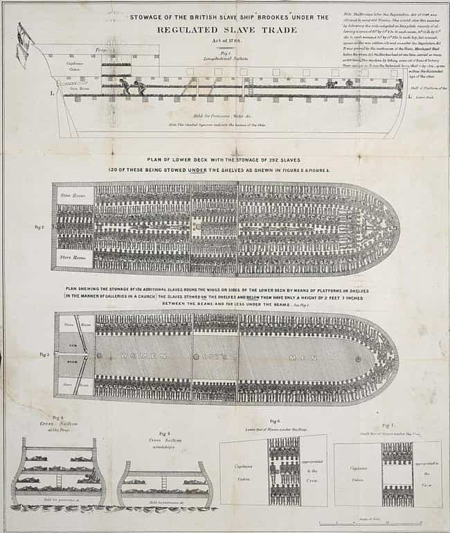 Ships Designed To Carry A Few ... is listed (or ranked) 4 on the list Hell On Water: The Brutal Misery Of Life On Slave Ships