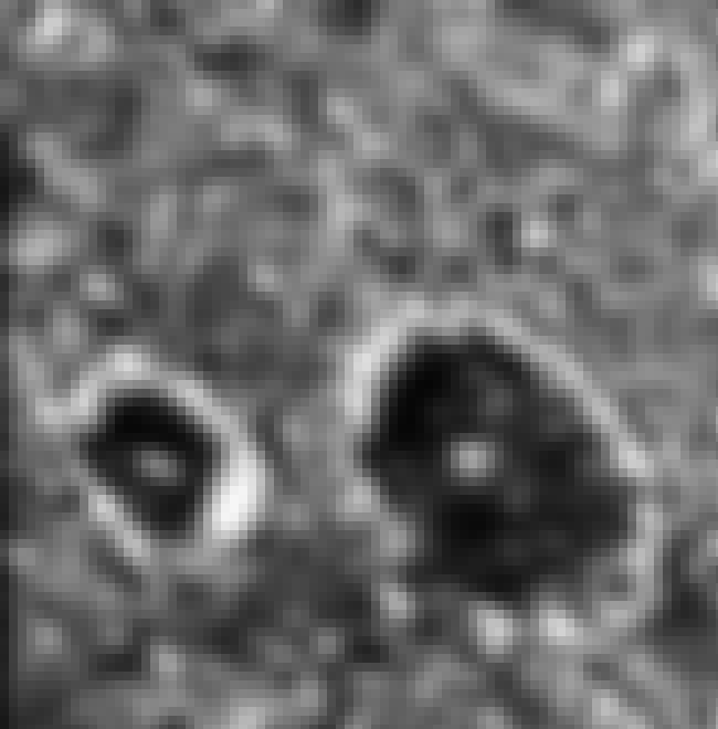 Craters On Ganymede is listed (or ranked) 4 on the list Trypophobia-Inducing Space Photos Scarier Than Any Black Hole