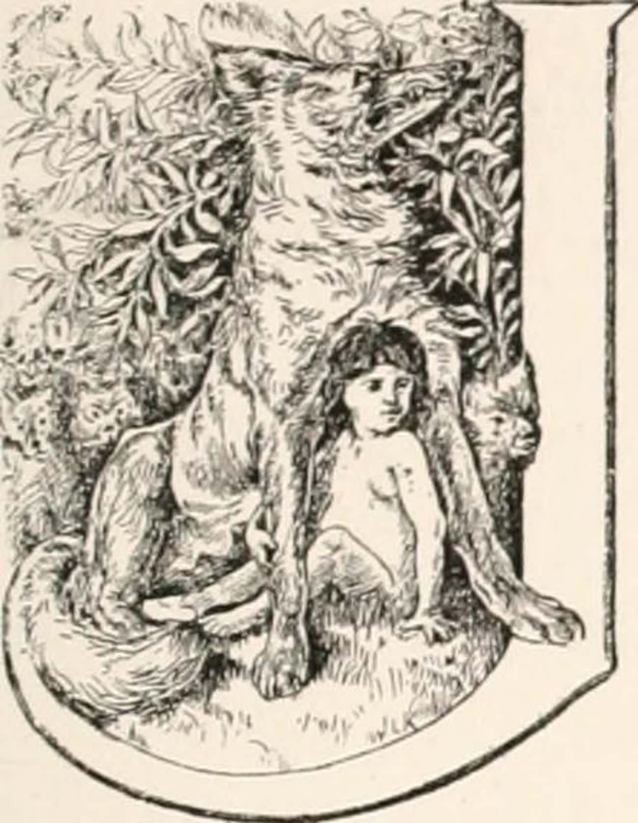 He Never Learned To Speak Or W is listed (or ranked) 3 on the list The Real-Life Inspiration For Mowgli In The Jungle Book Was A Feral Child Raised By Wolves