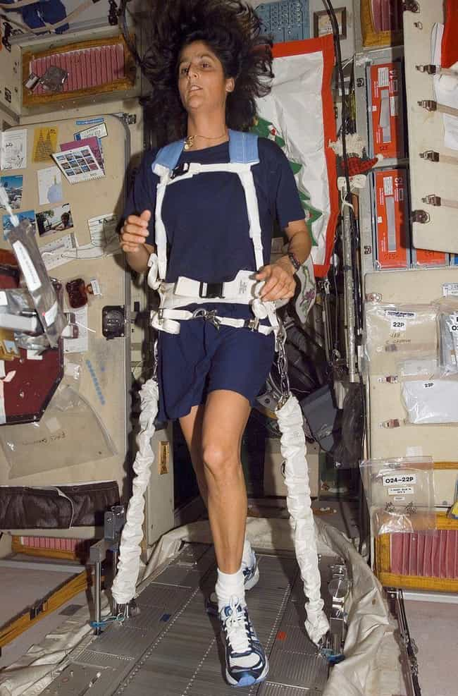 You Have To Be Physically Fit ... is listed (or ranked) 3 on the list A Step By Step Walkthrough Of The Astronaut Training Process
