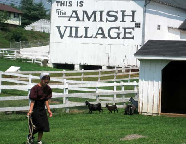 It Is Very Difficult To Integr... is listed (or ranked) 3 on the list Being Excommunicated From Amish Society Is A Cold, Brutal, And Heartless Process