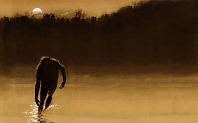 The Monster Subsists On A Diet... is listed (or ranked) 3 on the list The Fouke Monster Of Boggy Creek Has Been Terrifying People And Eating Pets For Years