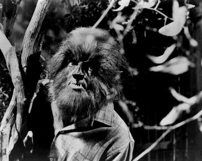 Strange Human Physical Feature... is listed (or ranked) 2 on the list The Forgotten History Of Werewolves Proves They Are The Scariest Of All Supernatural Monsters