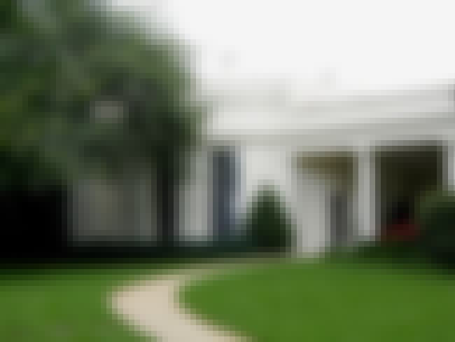 The West Wing Is Full Of Roach... is listed (or ranked) 1 on the list Weird Things You Didn't Know About Living in the White House