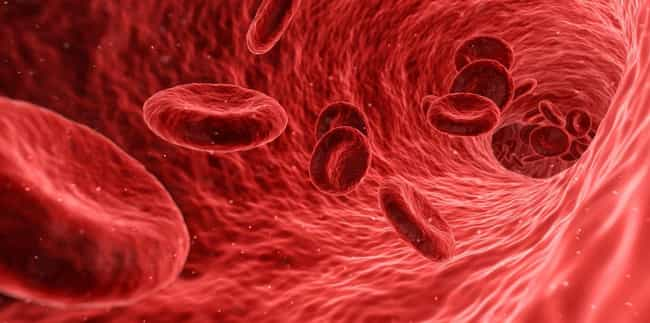 Different Blood Types Pu... is listed (or ranked) 3 on the list What Your Blood Type Says About You