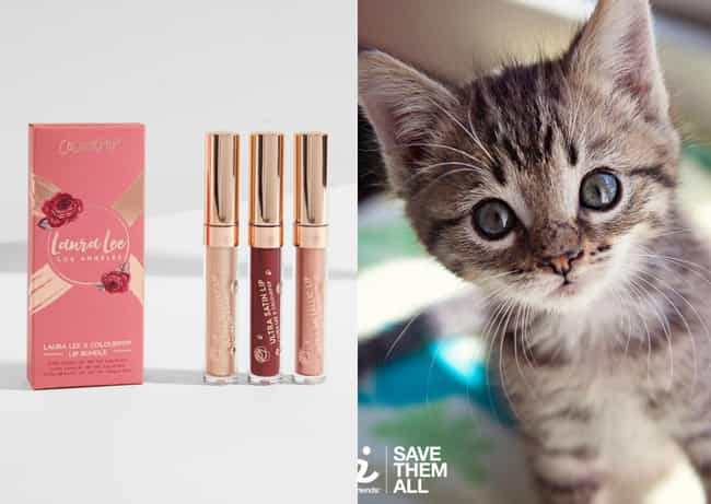 Colourpop's Makeup Helps... is listed (or ranked) 1 on the list Christmas Gifts You Can Buy That Help Support Animals