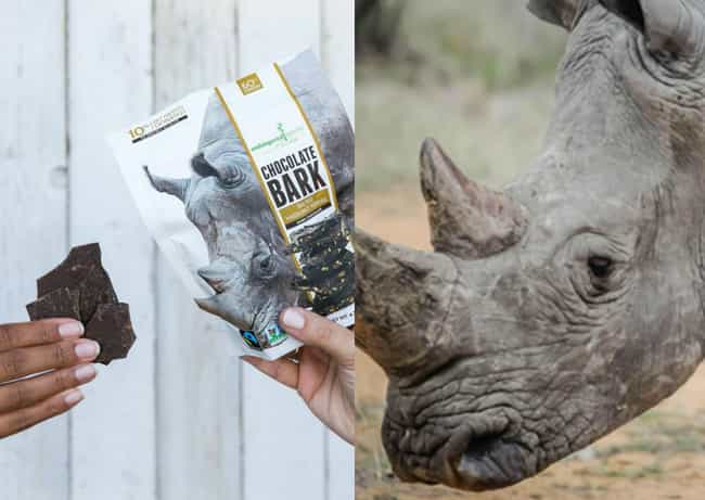Endangered Species Choco... is listed (or ranked) 3 on the list Christmas Gifts You Can Buy That Help Support Animals