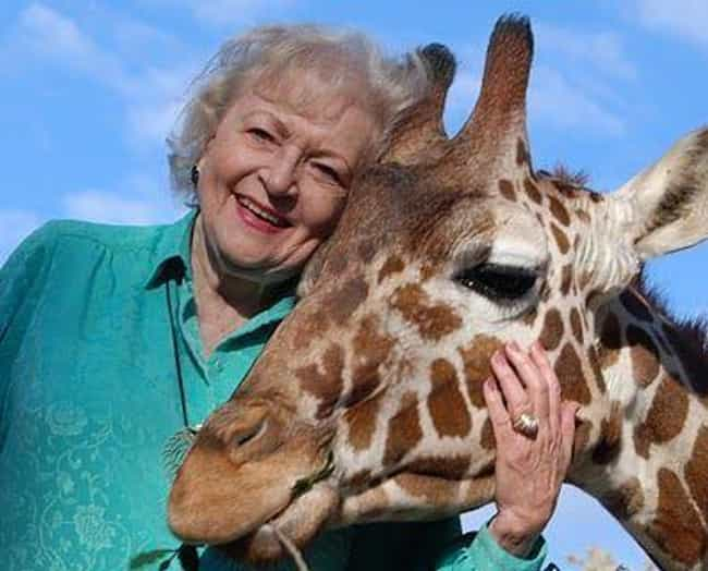 She's An Honorary Forest R... is listed (or ranked) 2 on the list Endearing Things You Never Knew About Betty White, America's Coolest Grandma