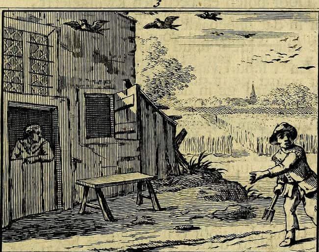 La maison a été supposée construite est répertorié (ou classé) 11 sur la liste Les habitants disent cette plantation de Virginie est hanté par six Boy Scouts assassinés