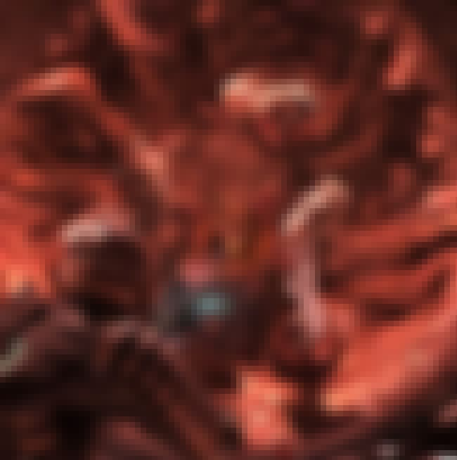 The Leviathan is listed (or ranked) 2 on the list List of All Dead Space Bosses Ranked Best to Worst
