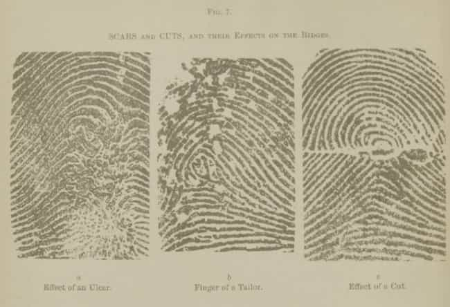 Fingerprint Analysis is listed (or ranked) 1 on the list Fascinating Victorian Attempts At Forensic Investigation