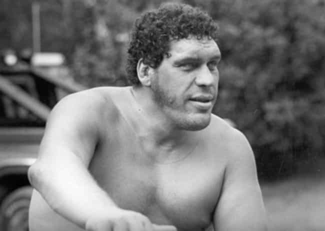 He Once Drank Over 100 Beers I... is listed (or ranked) 1 on the list 15 Stories That Prove André The Giant Was A Once In A Lifetime Legend