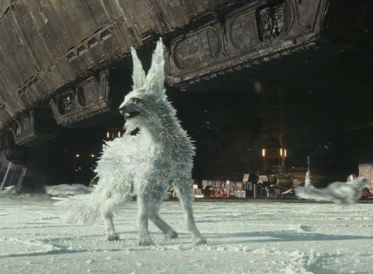 Vulptex is listed (or ranked) 2 on the list Every Cool New Addition To The Star Wars Universe Introduced In The Last Jedi
