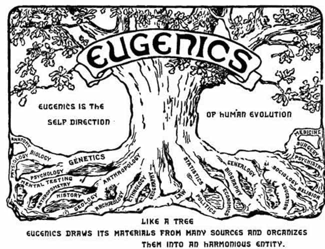 """Eugenics Was All The Rag... is listed (or ranked) 4 on the list Americans Used To Have """"Better Baby"""" Contests To Rank Who Had The Most Physically Perfect Infant"""