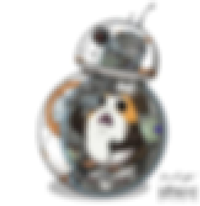 'I'm The Captain Now' is listed (or ranked) 4 on the list Aporgable Fan Art That Will Make You Wish Porgs Were Real