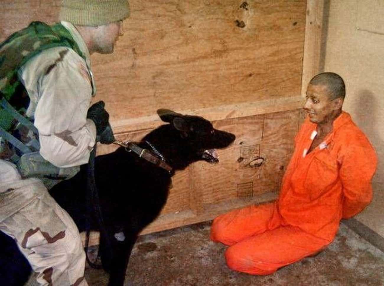 Torture Can Result In Death is listed (or ranked) 4 on the list America's History Of Running Secret Black Site Prisons Is Even Darker Than You'd Think