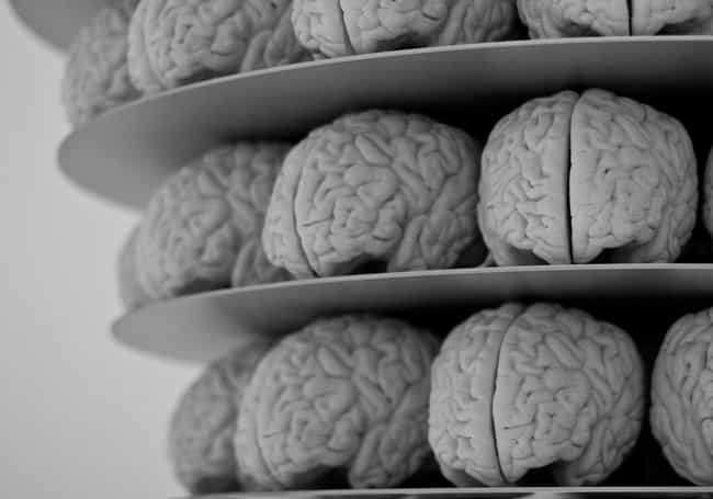 Our Brains Will Be Progr... is listed (or ranked) 2 on the list Conspiracy Theories We Think Will Be a Thing in 2018